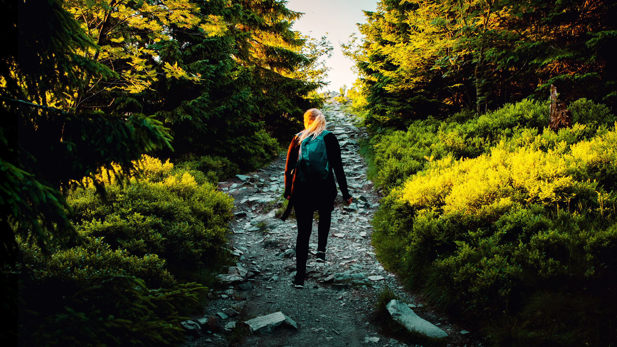 woman walking along a path in nature
