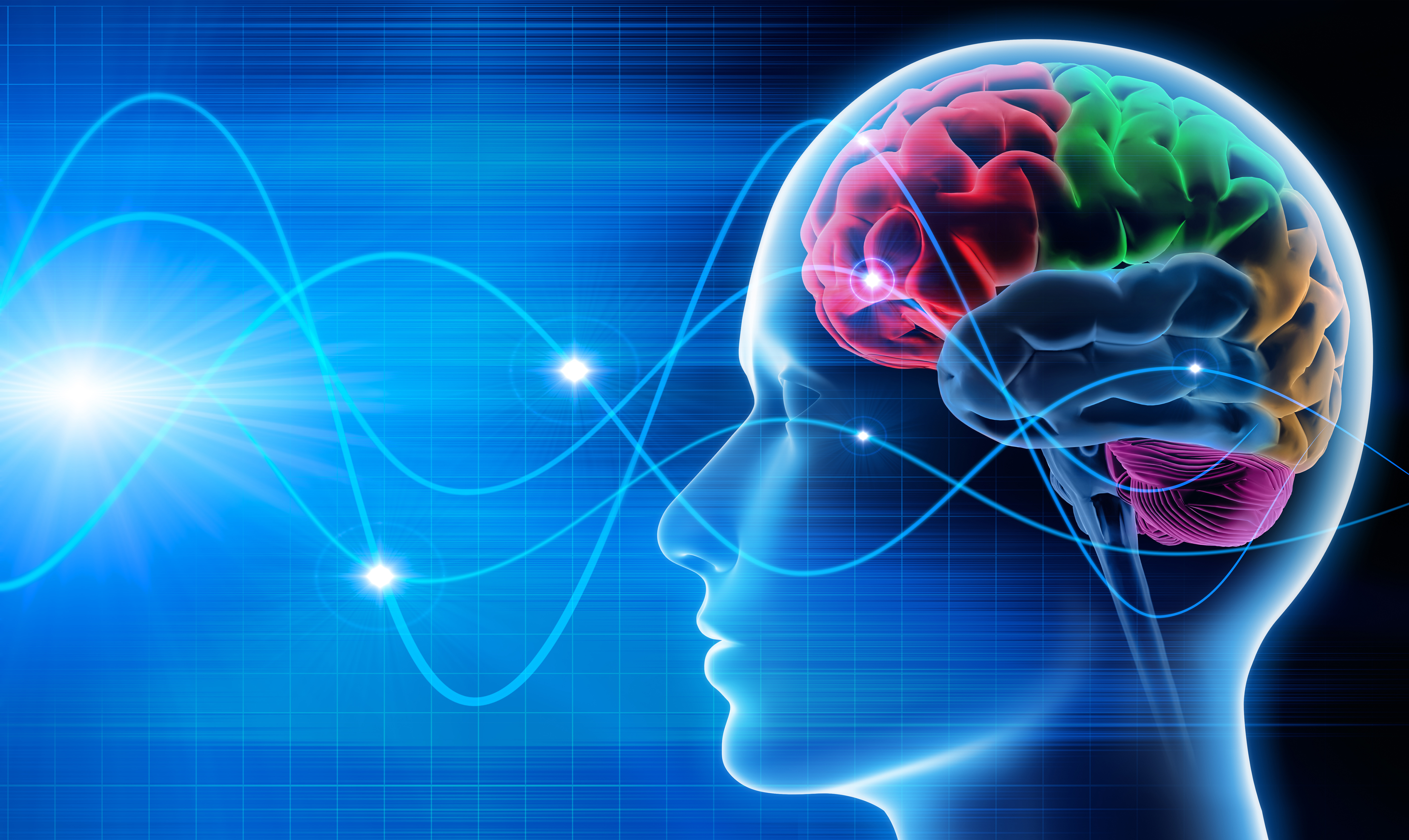 Brain, brain waves, 4 types of brainwaves, brain waves and yoga, brain waves and meditation