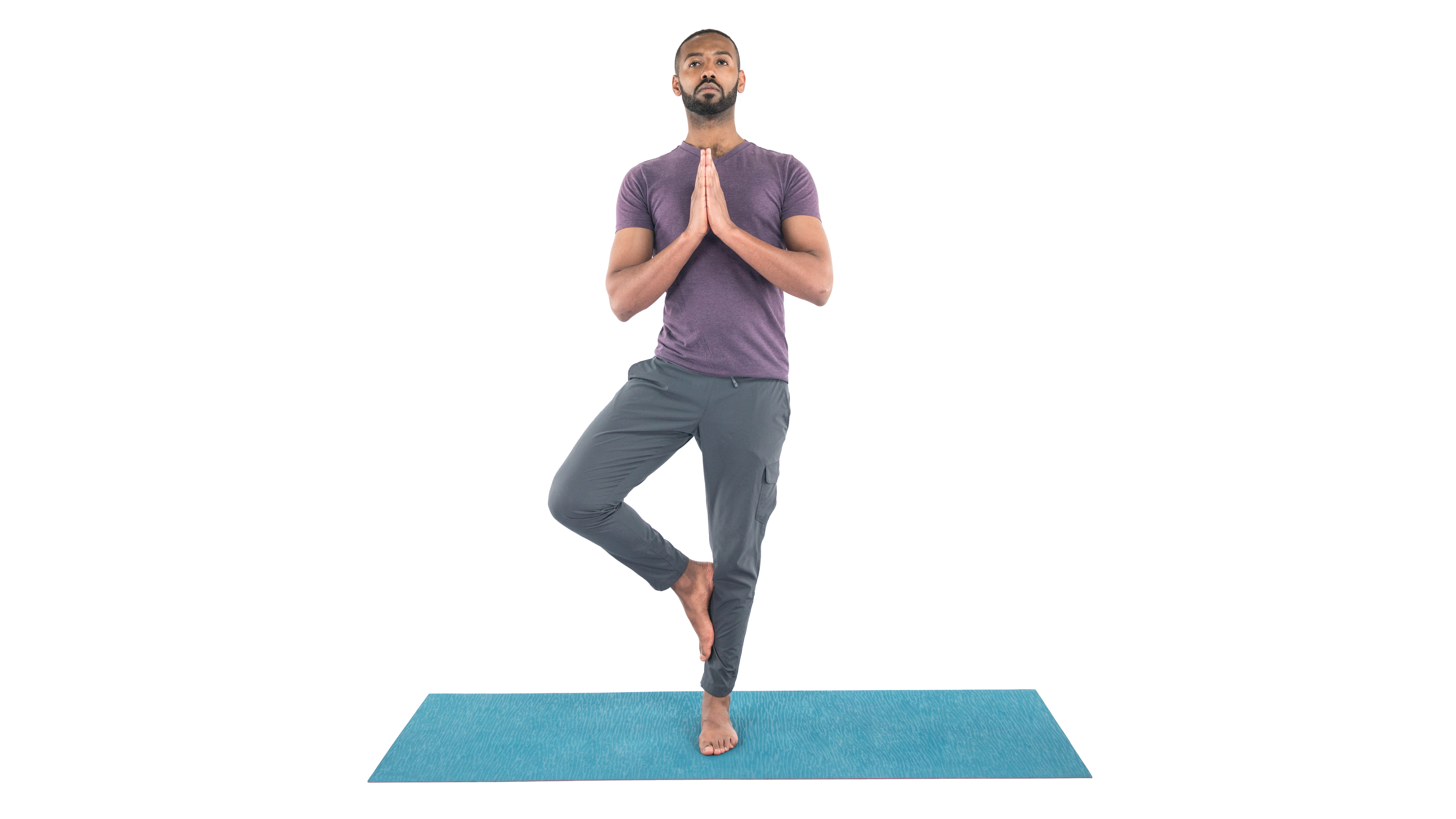 Vrksasana, Tree pose, tree pose variations, beginner's yoga, yoga everyday, yoga for developing greater interoception and proprioception