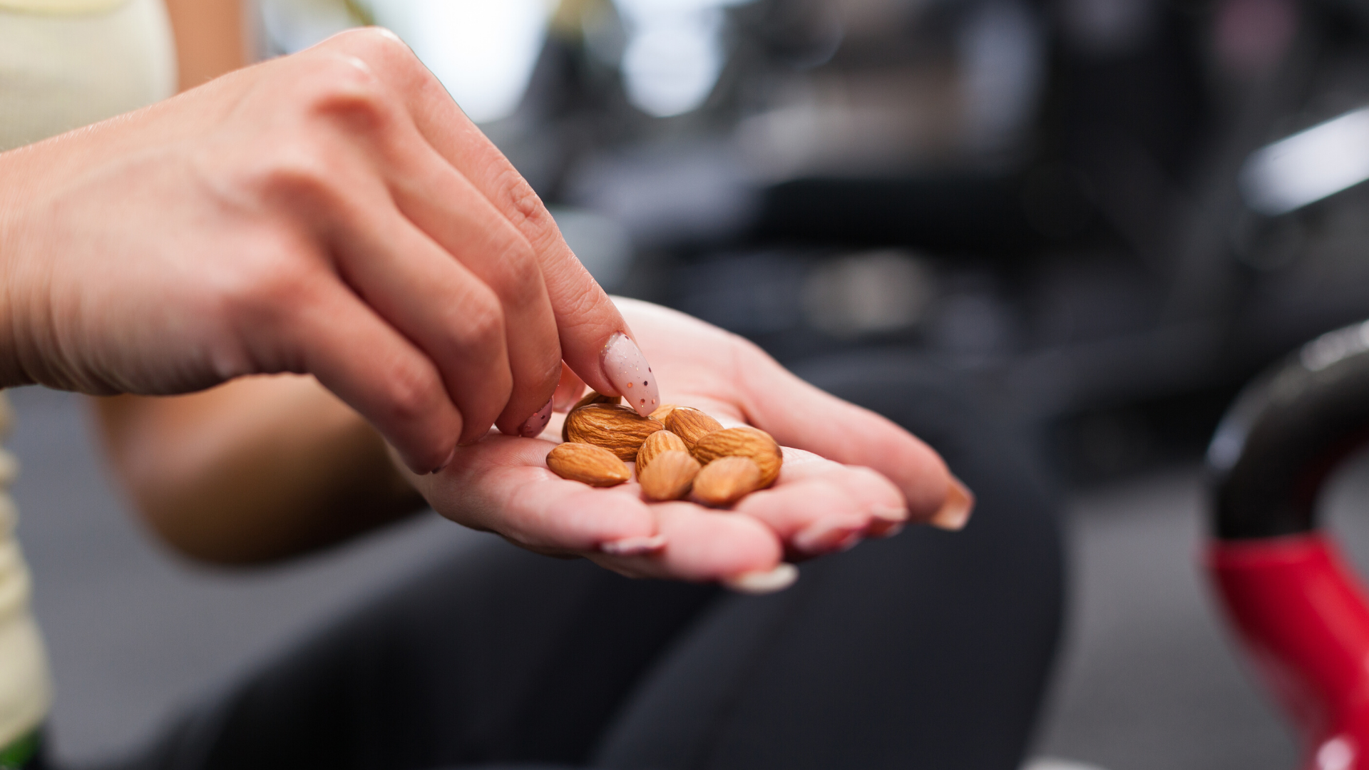 Close up of hand holding almonds.
