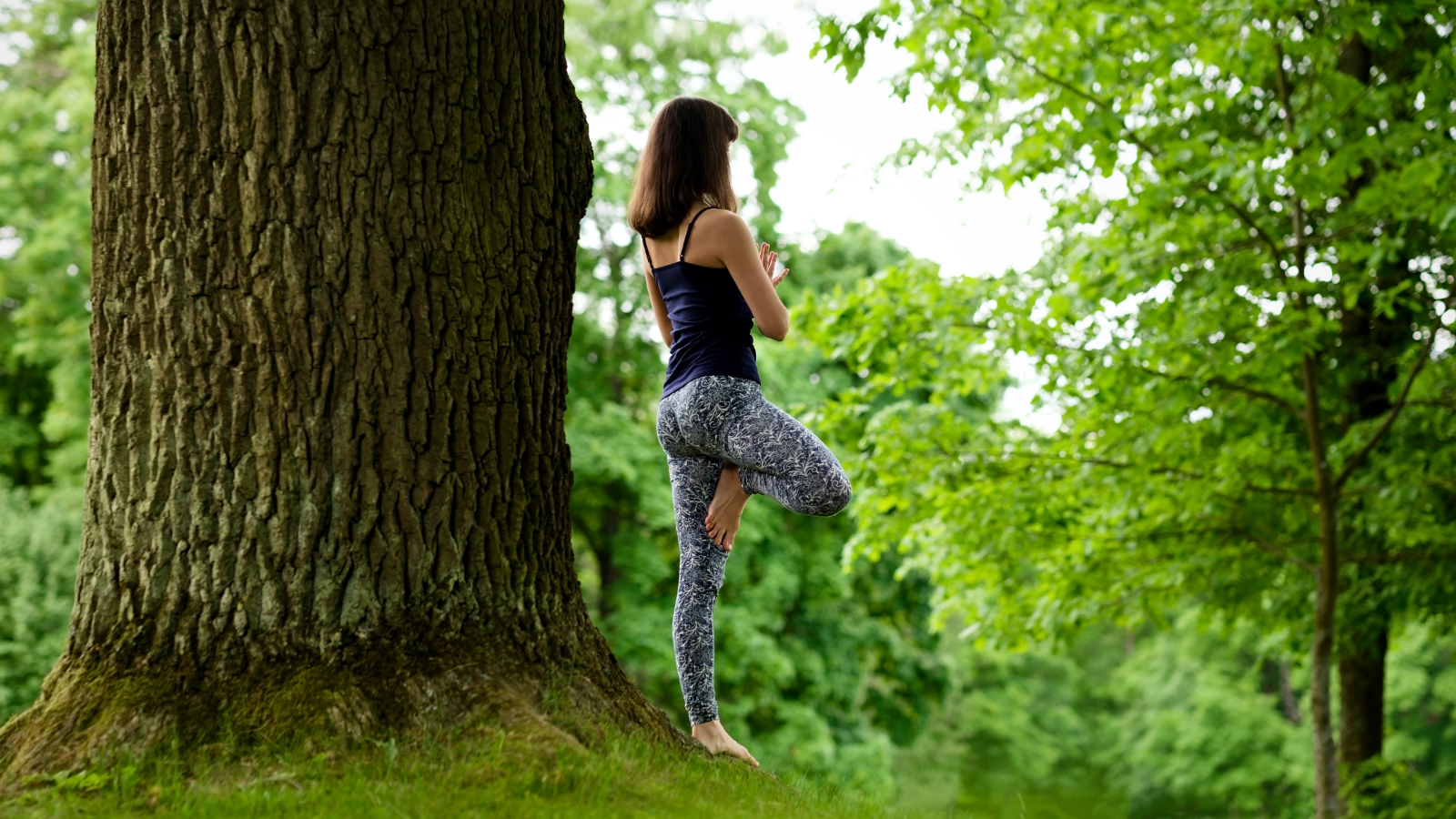 Attractive young female is practicing yoga and doing asana Vrikshasana in the morning
