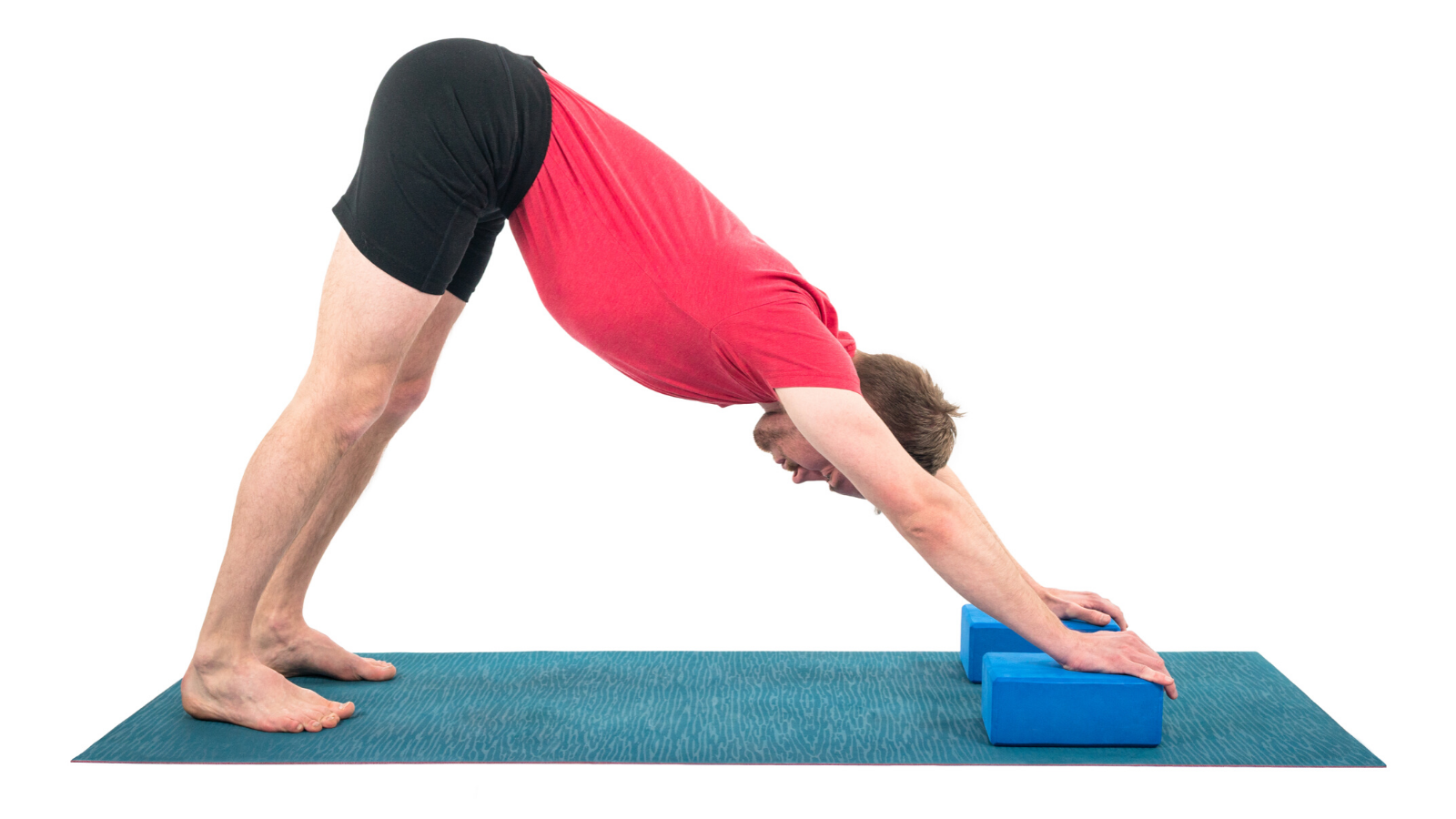 adho-mukha-svanasana-downward-facing-dog-yoga-pose