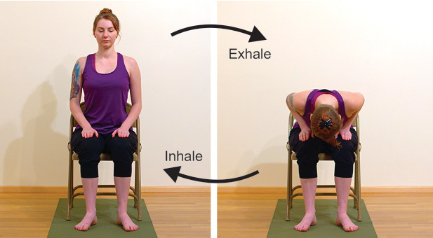 Yoga in a chair, learning forward folding in a chair