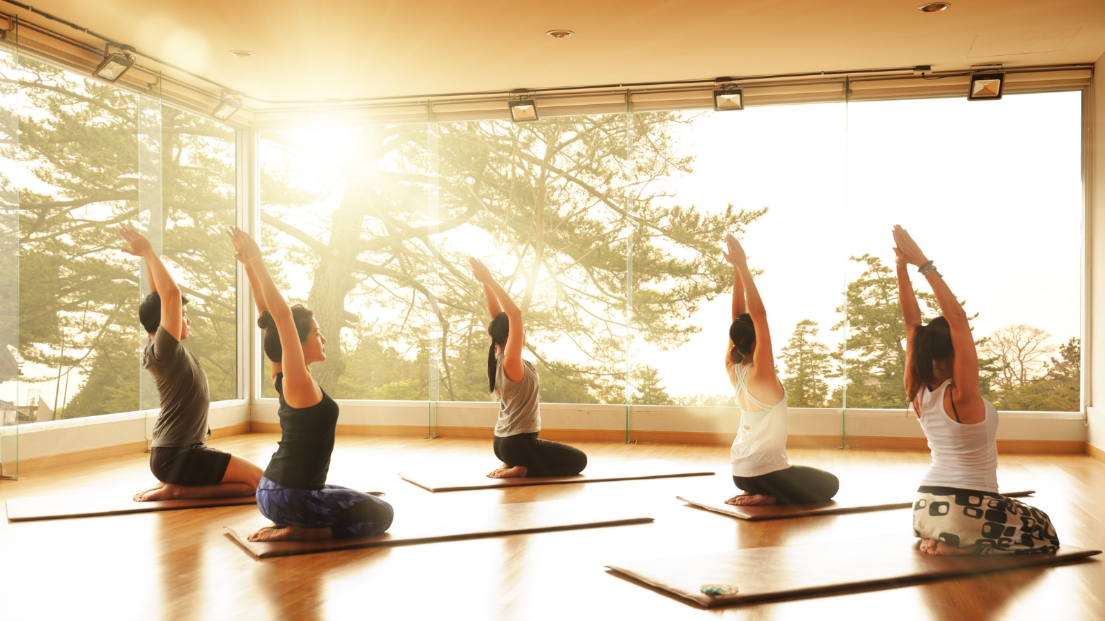 Students practicing yoga's seated sun salutes