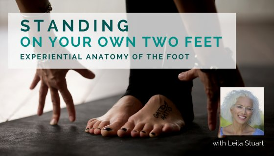 Leila Stuart, writer, yoga teacher, experiential anatomy, experiential anatomy of the foot