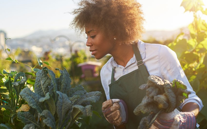 Mark Hyman on Racism in the Food Industry
