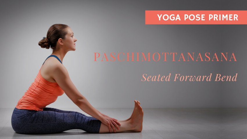 Paschimottanasana, Seated Forward Bend