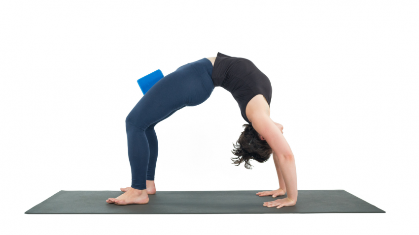 Urdva Dhanurasana, Upward Bow Pose, wheel, backbending, preparation for backbending, yoga pose primer