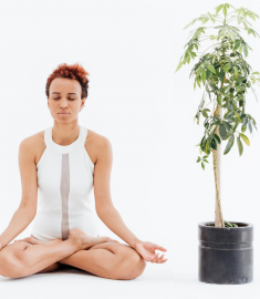beginner yoga student practice lotus pose in yoga to reduce stress and anxiety