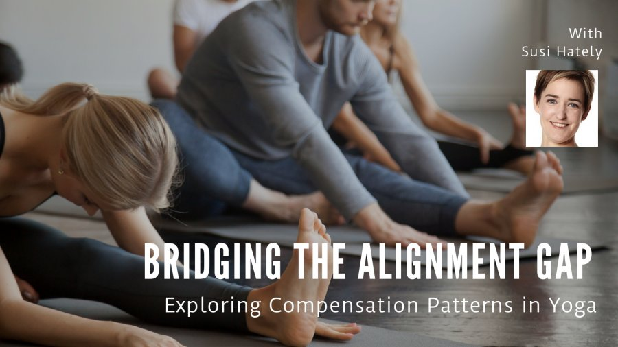 Susi Hately, yoga therapist, alignment in yoga, compensation patterns in yoga, yoga tor educators